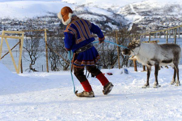 Learn Sami Culture in Finland