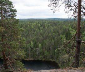 Southern Konnevesi National Park