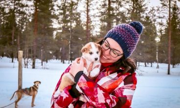 Husky Safari in Lapland – a first timer's guide