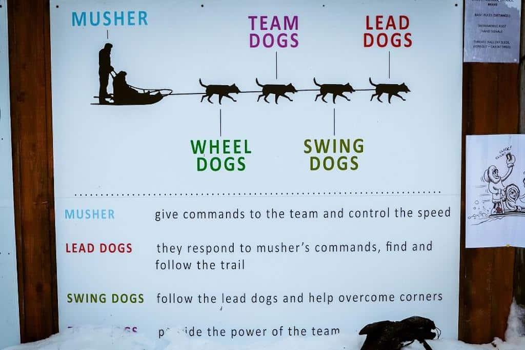 husky-safari-in-lapland-guidelines